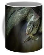 Hanging Big Eared Bat Coffee Mug