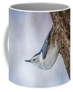 Hanging Nuthatch Coffee Mug