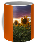 Happiness Is A Field Of Sunflowers Coffee Mug