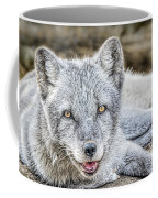 Happy Arctic Fox Coffee Mug