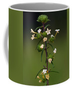 Happy Flowers Coffee Mug