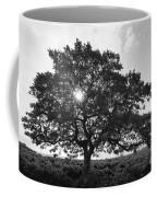 Hapuna Beach Park Coffee Mug