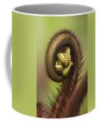 Hapuu Fern Frond Shoot Coffee Mug