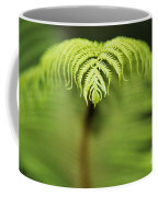 Hapuu Fern Coffee Mug