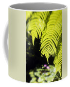 Hapuu Ferns Coffee Mug