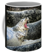 Harbor Seal Coffee Mug