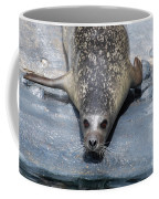 Harbor Seal Ready To Plunge Into The Water Coffee Mug
