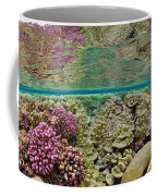 Hard Coral Carpets A Shallow Seafloor Coffee Mug by Brian J. Skerry