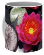 Hardy  Day Water Lily Coffee Mug