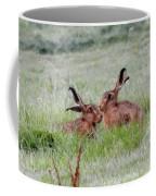 Hare 2 Day Coffee Mug
