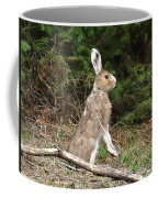 Hare That Coffee Mug