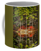 Harold Parker State Park In The Fall Coffee Mug