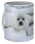 Harp Seal Pup Coffee Mug