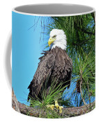 Harriet One More Look  Coffee Mug