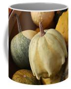 Harvest Of Gourds Coffee Mug
