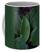 Hosta Dew Drops Coffee Mug
