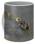Having Your Duckies In A Row  Coffee Mug