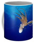 Hawaii, Day Octopus Coffee Mug
