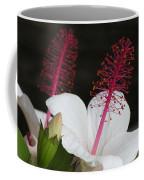 Hawaii Flower Coffee Mug