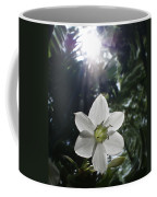 Hawaiian Flower Coffee Mug