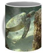 Hawaiian Green Sea Turtle Coffee Mug