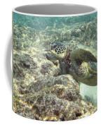 Hawaiian Green Turtle Coffee Mug