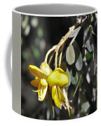 Hawaiian Mamane Coffee Mug