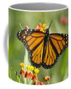Hawaiian Monarch 3 Coffee Mug