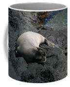 Hawaiian Monk Seal Ilio Holo I Ka Uana Coffee Mug