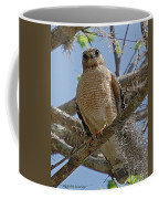 Hawk Gawk Coffee Mug