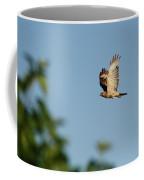 Hawk In Flight 2 Coffee Mug