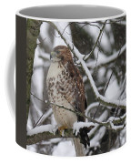 Hawk In Winter Coffee Mug