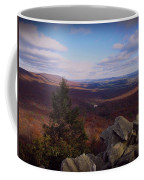 Hawk Mountain Sanctuary Coffee Mug by David Dehner