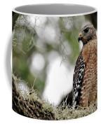 Hawk On Watch Coffee Mug