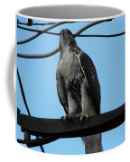 Hawk Urban Hunting Coffee Mug