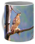Hawk With Prey Coffee Mug