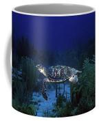 Hawksbill Sea Turtle 1 Coffee Mug