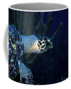 Hawksbill Sea Turtle 2 Coffee Mug