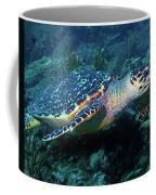 Hawksbill Sea Turtle 3 Coffee Mug