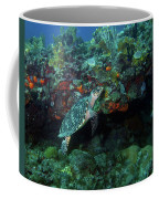 Hawksbill Sea Turtle 4 Coffee Mug