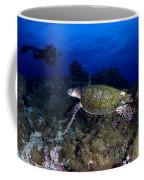Hawksbill Turtle Swimming With Diver Coffee Mug by Steve Jones