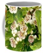 Hawthorn Gold Coffee Mug