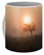 Hawthorn In The Mist Coffee Mug