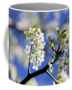 Hawthorn Coffee Mug