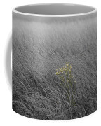 Hay Daisy In The Fog Coffee Mug