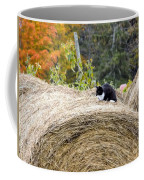 Hay Kitty Coffee Mug