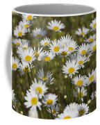 He Loves Me Daisies Coffee Mug