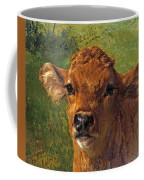 Head Of A Calf Coffee Mug