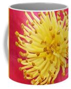 Heart Of Indian Hawthorn Coffee Mug