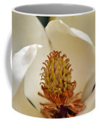 Heart Of Magnolia Coffee Mug